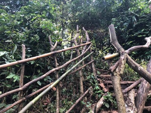 hike41